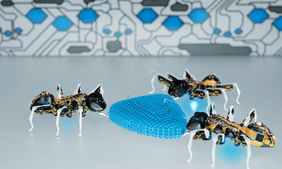 Jumbo-Robotic-Ants