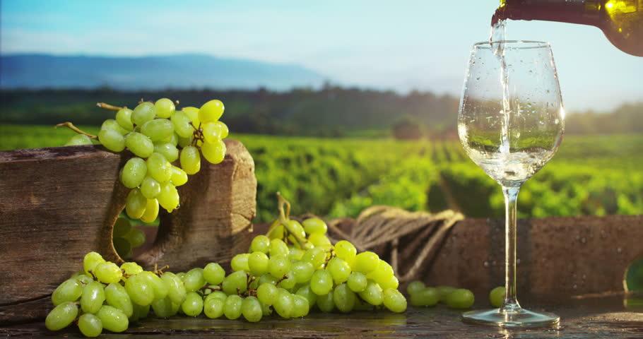 wines-Toasting