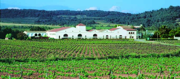 Nadal_wine